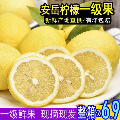 【一级果】四川安岳黄柠檬新鲜当季水果批发包邮非青柠香水柠檬