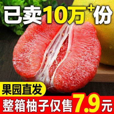 【现货】红心柚子白心蜜柚福建琯溪柚三红肉柚当季新鲜水果多规格