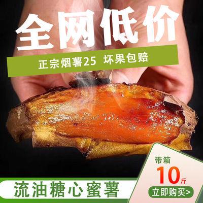 【烤蜜薯店专供】烟薯25号新鲜红薯红心番薯小香薯山东烤地瓜批发