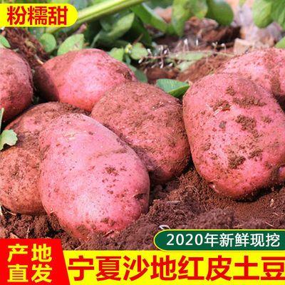 宁夏沙地红皮黄心土豆鲜土豆5/10斤大土豆马铃薯洋芋5斤5.9包邮