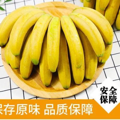 云南香蕉整箱10斤自然熟当季水果新鲜包邮十斤非广西小米蕉芭蕉