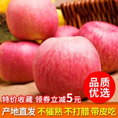 烟台红富士苹果水果5/10斤 山东栖霞当季新鲜水果脆甜整箱批发
