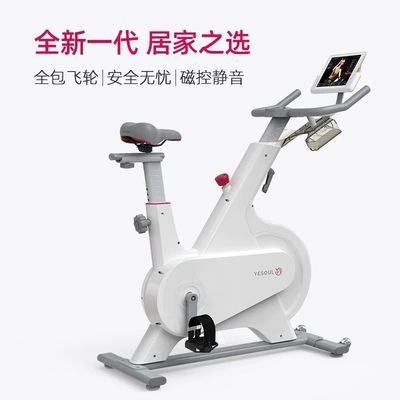 YESOUL野小兽动感单车磁控家用超静音健身车室内减肥器小米有品M1