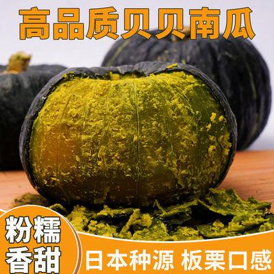贝贝南瓜正宗日本网红贝贝小南瓜板栗味富硒迷你蔬菜甜糯宝宝辅食