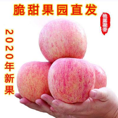 烟台栖霞红富士苹果正宗脆甜多汁水果新鲜应季孕妇冰糖心整箱批发