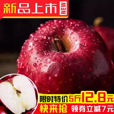 https://t00img.yangkeduo.com/goods/images/2020-09-12/2ec3f5865465c04b655c1707991c80bf.jpeg