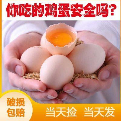 【比土鸡蛋还土】绿色无公害营养谷物鸡蛋土鸡蛋新鲜柴鸡蛋笨鸡蛋