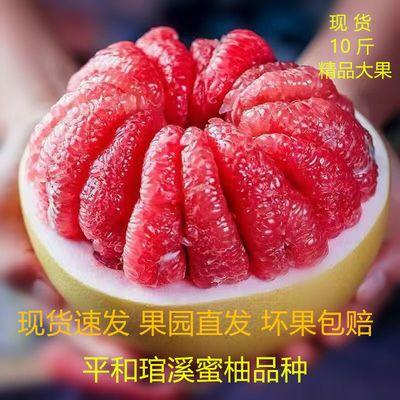 【现货现摘】柚子红心蜜柚福建平和琯溪新鲜红肉当季水果礼盒装