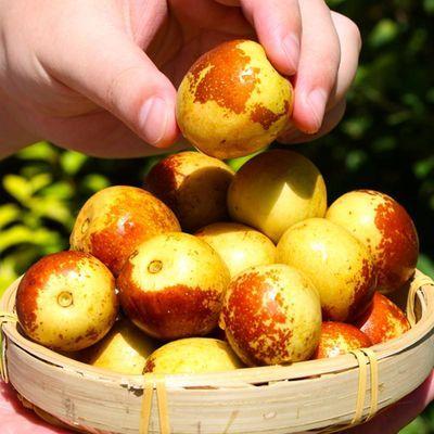 山东沾化冬枣新鲜应季水果3斤5斤当季现摘整箱脆甜枣子