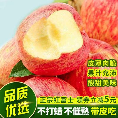正宗烟台栖霞红富士苹果水果10斤5斤 当季山东新鲜苹果脆甜整箱