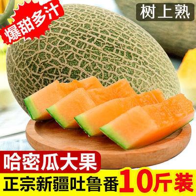 新疆哈密瓜整箱10斤新鲜孕妇水果当季西洲密25号网文脆纹2斤甜瓜