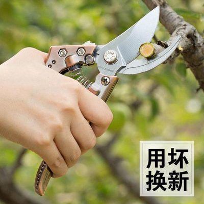 省力树枝剪剪枝花剪芍药园艺支架修枝剪园林花艺剪刀剪子花剪刀