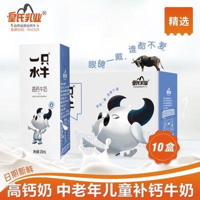 皇氏乳业 一只水牛高钙牛奶 调制水牛奶早晚餐营养奶200ml*10盒
