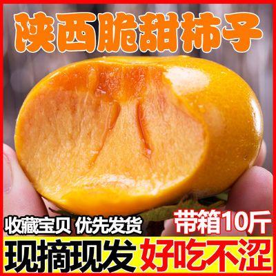 陕西脆甜柿子新鲜应季孕妇水果现摘硬巧克力黄皮柿子10斤批发包邮