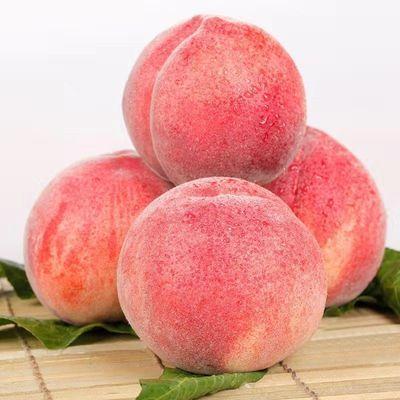 【新鲜直达】山东现摘桃子水蜜桃孕妇水果应季脆桃毛桃水果批发