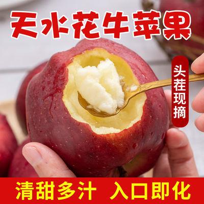 甘肃天水花牛苹果现摘现发新鲜当季水果红蛇果整箱应季苹果包邮装
