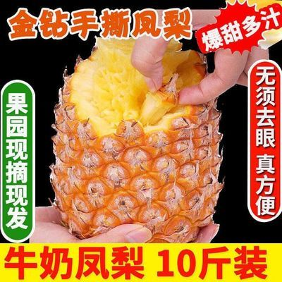 爆甜爆汁 10斤金钻凤梨新鲜水果手撕无眼凤梨1/2.5/8斤海南菠萝