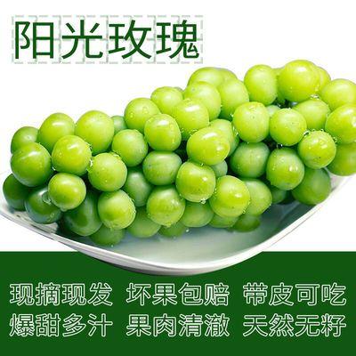 https://t00img.yangkeduo.com/goods/images/2020-09-16/8cb59f7469231cf82207d993e31680ce.jpeg
