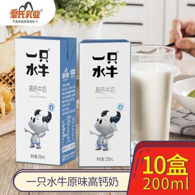 皇氏乳业 一只水牛高钙牛奶调制水牛奶早晚餐营养奶*箱