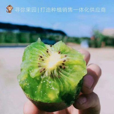 博山桃5斤特大果源泉碧玉新鲜水果绿果甜包邮箱