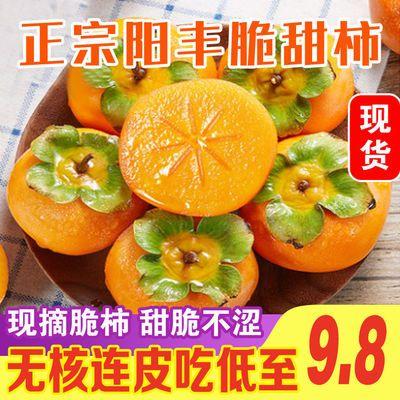 应季正宗阳丰脆甜柿子新鲜水果甜柿不涩口孕妇巧克力柿2-10斤包邮