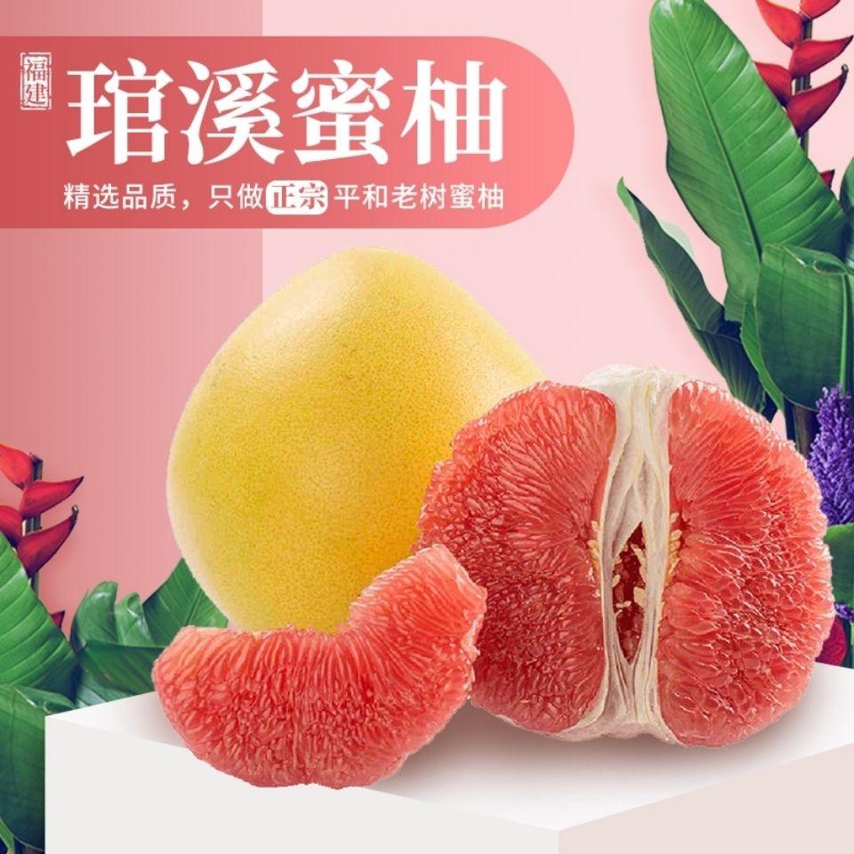 正宗福建平和琯溪蜜柚 红肉柚子 红心柚 当季新鲜水果 现摘现发