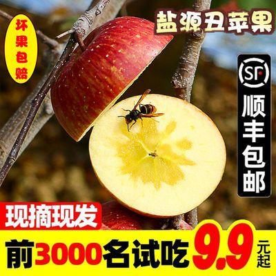 冰糖心丑苹果盐源大凉山红富士当季新鲜水果野脆甜当季整箱10斤