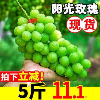 阳光玫瑰日本无籽青提新鲜提子晴王香印应季孕妇水果葡萄整箱批发