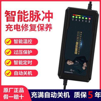 【自动断电】电动车电瓶车三轮车电车充电器48v60V72通用雅迪爱玛