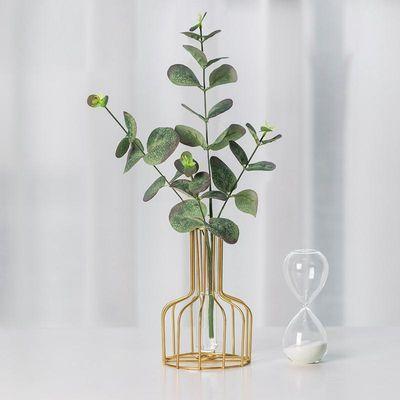 ins风创意简约网红水培试管小花瓶摆件客厅干花插花花器餐桌装饰