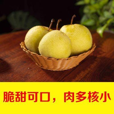 现摘山西贡梨王过酥梨孕妇水果脆甜多汁新鲜应季水果单果200g起