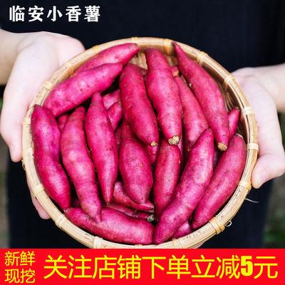 红薯新鲜红蜜薯糖心临安天目山板栗小香薯农家自种番薯黄心地瓜