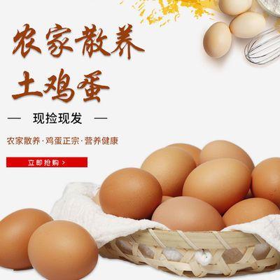 包邮鲜鸡蛋红皮大个土鸡蛋散养鸡蛋洋鸡蛋包赔新鲜