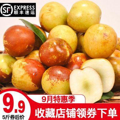 【脆甜多汁】山东沾化冬枣新鲜水果当季整箱应季5斤枣大枣甜脆枣
