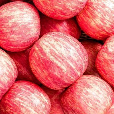 陕西红富士苹果当季新鲜水果脆甜多汁果园现摘现发整箱包邮非花牛