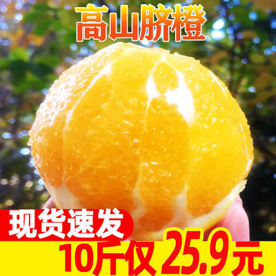 【现货现发】高山秭归脐橙新鲜水果应季橙子批发孕妇冰糖橙现摘