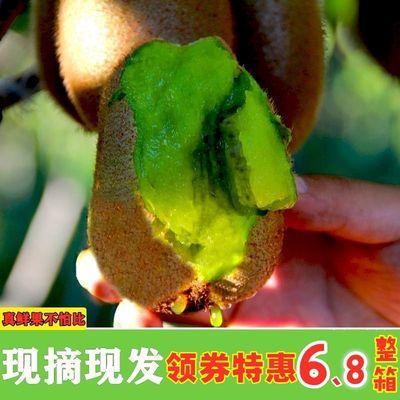 陕西绿心猕猴桃当季新鲜水果非红心黄心弥猴桃整箱水果批发