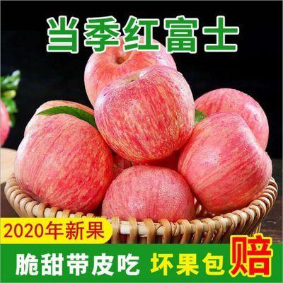 山西红富士苹果水果冰糖心超脆甜 3/5/10斤孕妇水果 苹果整箱批发
