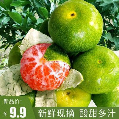 新鲜橘子10斤 城固薄皮蜜桔 现摘青桔子酸甜多汁孕妇水果1斤包邮