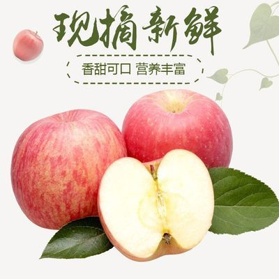 陕西洛川高原冰糖心脆甜红富士苹果5斤10斤包邮非山东烟台