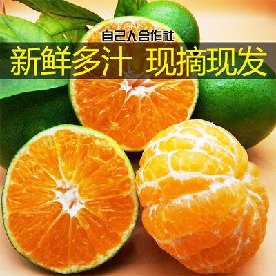橘子水果新鲜桔子批发柑橘孕妇应季云南蜜橘薄皮青桔宜昌蜜桔多仓