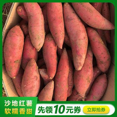 【坏果包赔】龙九红薯10斤装沙地黄心蜜薯番薯地瓜新鲜山芋3斤5斤
