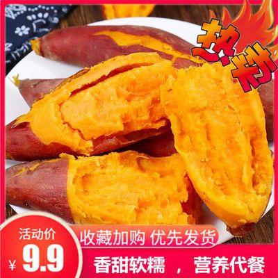龙九红薯新鲜农家自种番薯沙地黄心板栗红薯软糯香甜山芋蜜薯地瓜