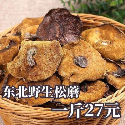 松蘑干货东北特产野生松蘑松菇粘蛾子粘团子蘑菇野生松菇蘑菇