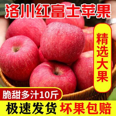 75867/陕西洛川红富士苹果水果新鲜5/10斤脆甜多汁不打蜡带皮吃整箱批发