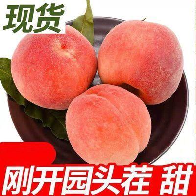 【顺丰现货】新鲜桃子金秋红蜜桃映霜红冬桃毛桃脆甜桃子非水蜜桃