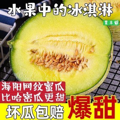 【新鲜】海阳网纹蜜瓜哈密瓜零食水果枚玫珑甜瓜现摘孕妇儿童水果