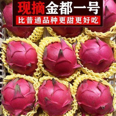 海南金都一号红心火龙果红肉应季时令水果整箱批发非越南白心