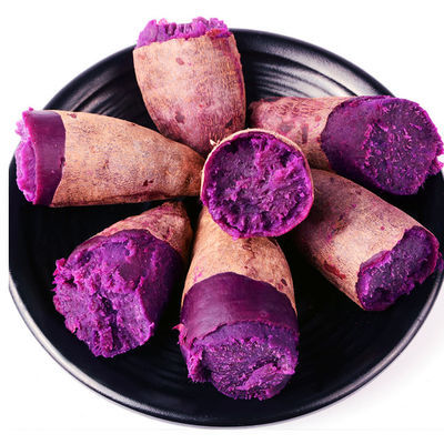 【超低】山东紫薯9斤沂蒙山紫薯新鲜番薯5斤红薯蜜薯地瓜现挖