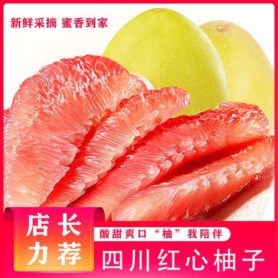 自家果园正品红心蜜柚新鲜红肉柚子当季时令水果包邮四川吉安